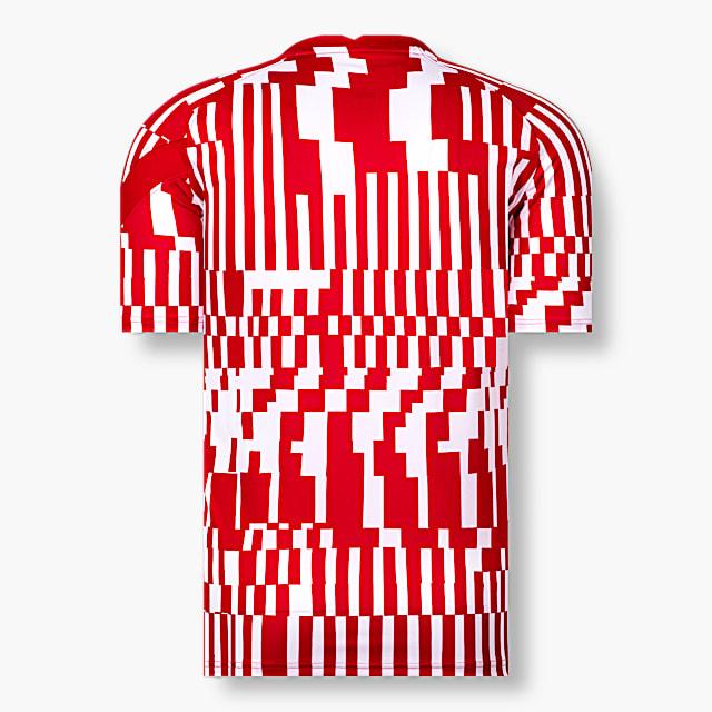 RBS Nike Warm Up T-Shirt 21/22 (RBS21015): FC Red Bull Salzburg rbs-nike-warm-up-t-shirt-21-22 (image/jpeg)